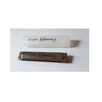 CREMONIA HM0120 MIZIKA 20 DELİK PROFESSIONAL HARMONICA