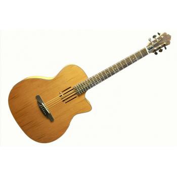 Champes CH-6 Akustik Gitar + KILIF
